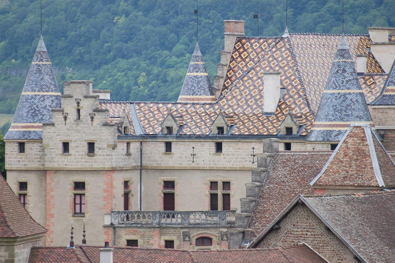 Château de Pupetières