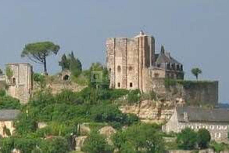 Château de Turenne