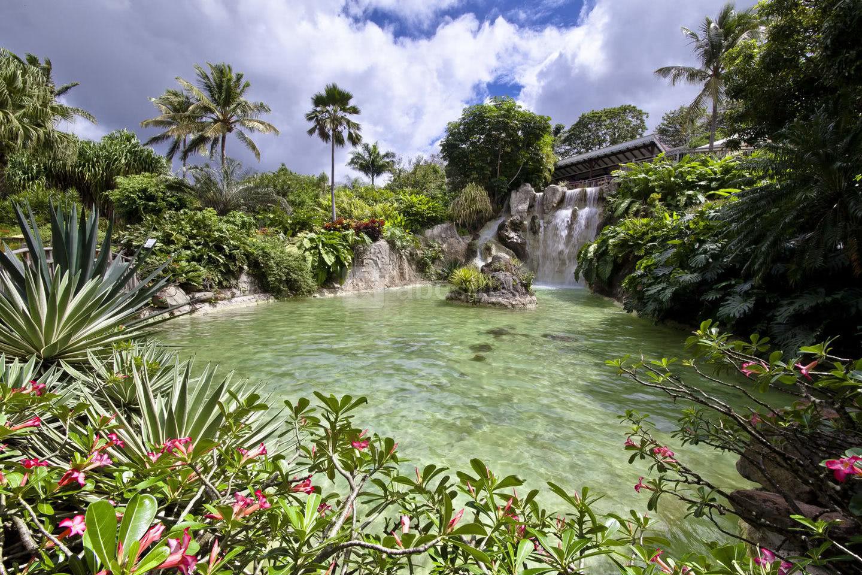 Jardin Botanique De Deshaies Villers Abc Salles