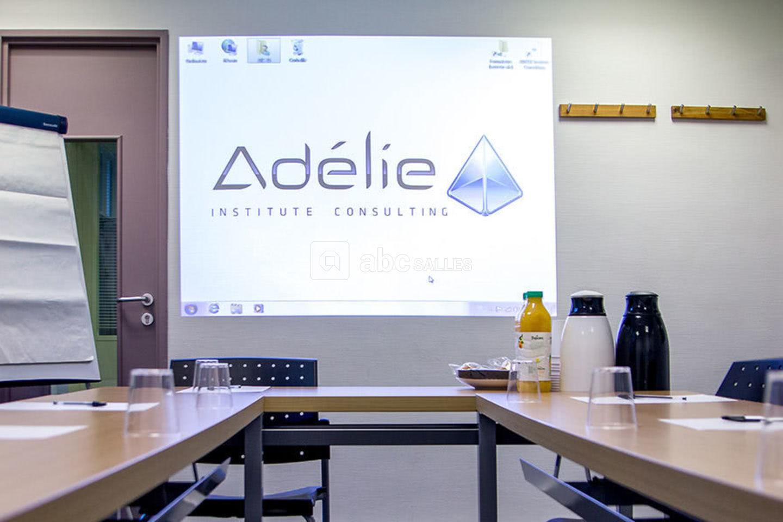 Adélie Institute Consulting Opéra