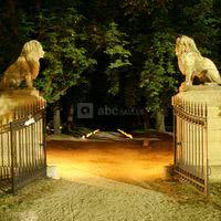 Les lions du Château d'Alphéran