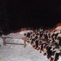 Les canapés en neige & peaux