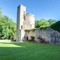 Cour du château - Pelouse