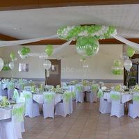 Salle césar vert et blanc