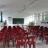 La salle de réunion forêt