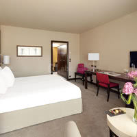 Partial Sea View King/Twin room