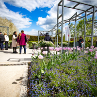 Jardins du musée des impressionnismes Giverny