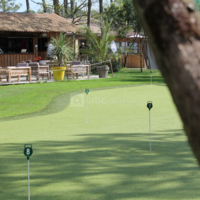 Bar et golf