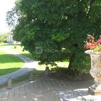 Chateau de brezal