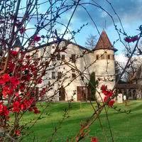Domaine Saint Jean de Chepy