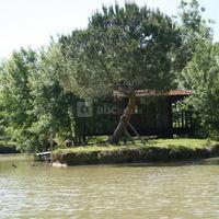 La cabane sur les étangs