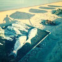 Maora Beach