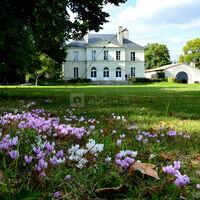 Château et Salle blanche