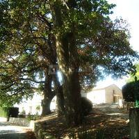 Domaine de Brametourte