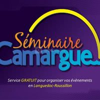 Salle de réunion Montpellier - Séminaire Camargue