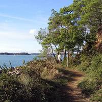 Balade sur les sentiers du Golfe du Morbihan