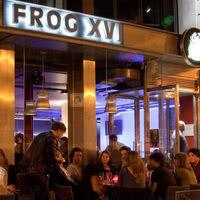 Frog XVI