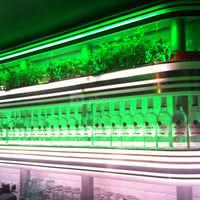 Mojito Lab