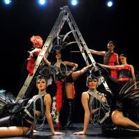 Spectacle cabaret les diamond dogs