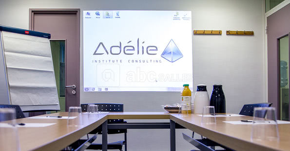 Adélie Institute Consulting Opéra