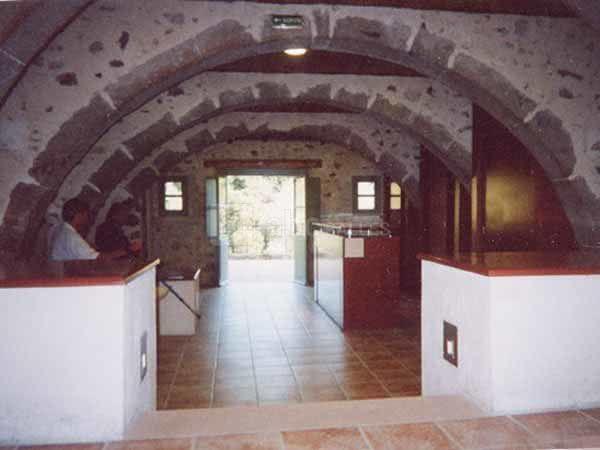 enclos tortue d hermann